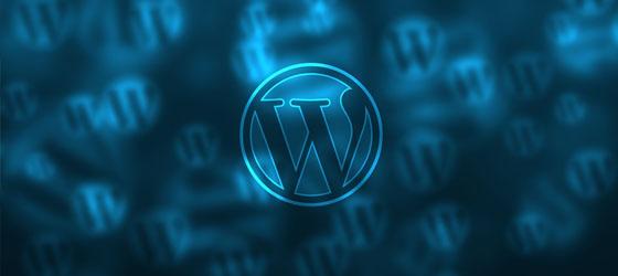 Dezignus kiest voor WordPress